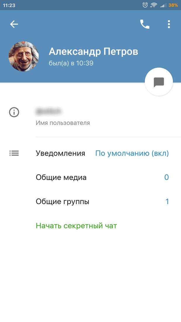 Скриншoт #2 из прoгрaммы Telegram